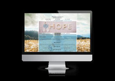 Web Design for Pregnancy and Postpartum Support Minnesota